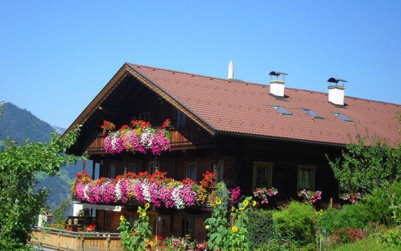 wohnung-mieten-skigebiet-fuegen-bauernhaus-sommer